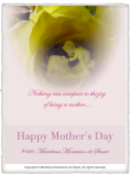 Copyright © Marielena Montesino de Stuart. All rights reserved. HAPPY MOTHER'S DAY 2013